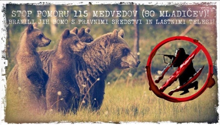 Medvedov ne dajo! Branili jih bodo tudi s svojimi življenji!