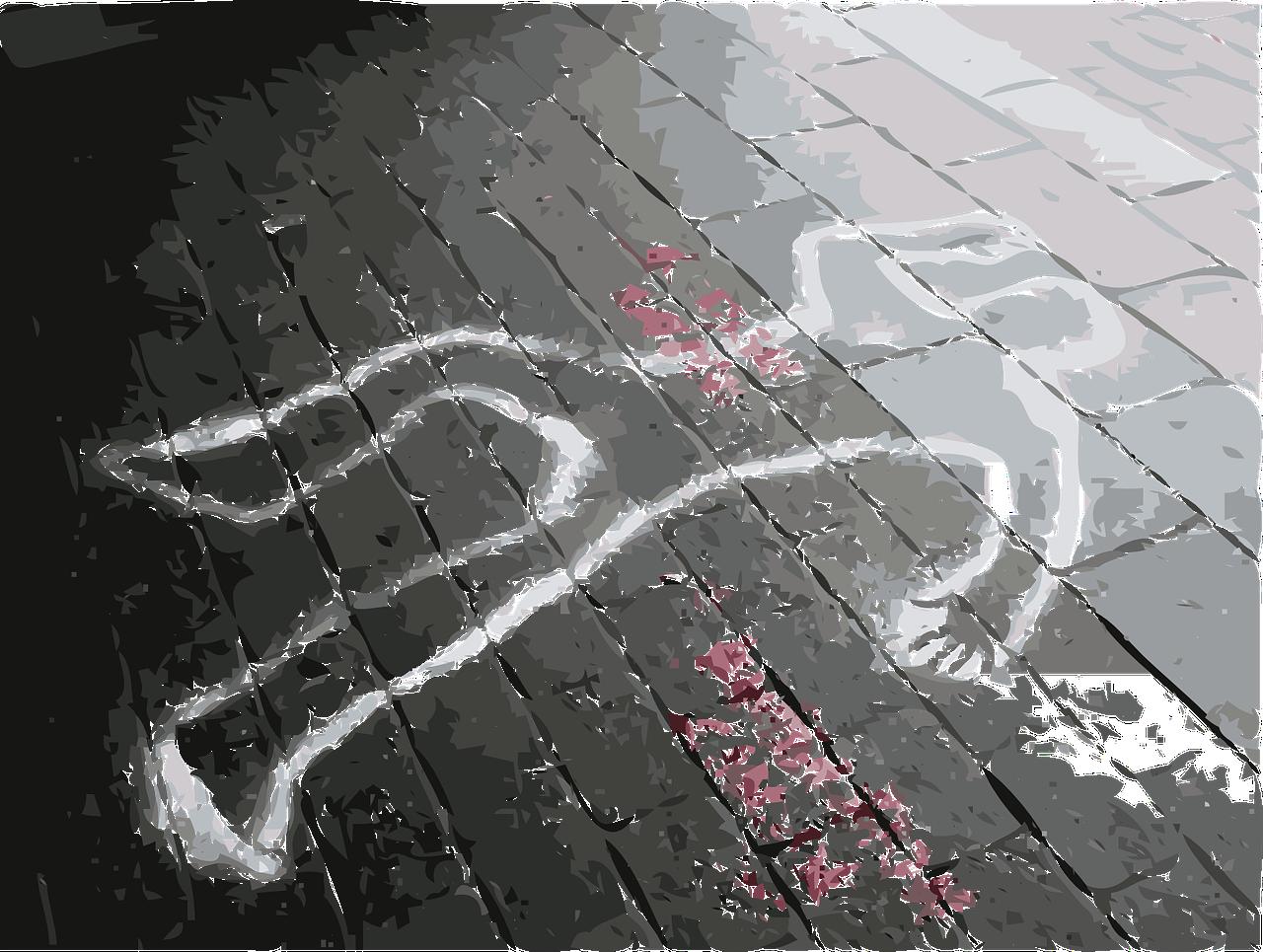 nasilna smrt, umor